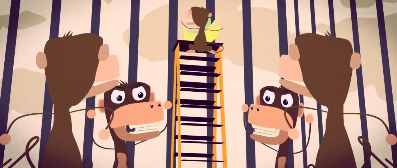 A histórias dos 5 macacos